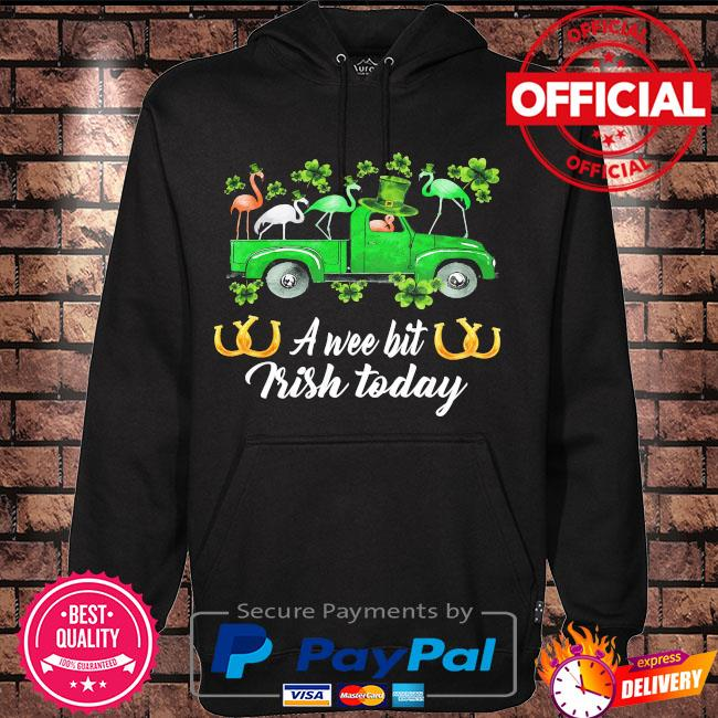 Flamingos st patrick's day a wee bit Irish today s Hoodie black