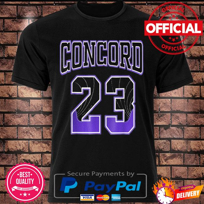 Simple 23 made to match with jordan 12 dark concord shirt