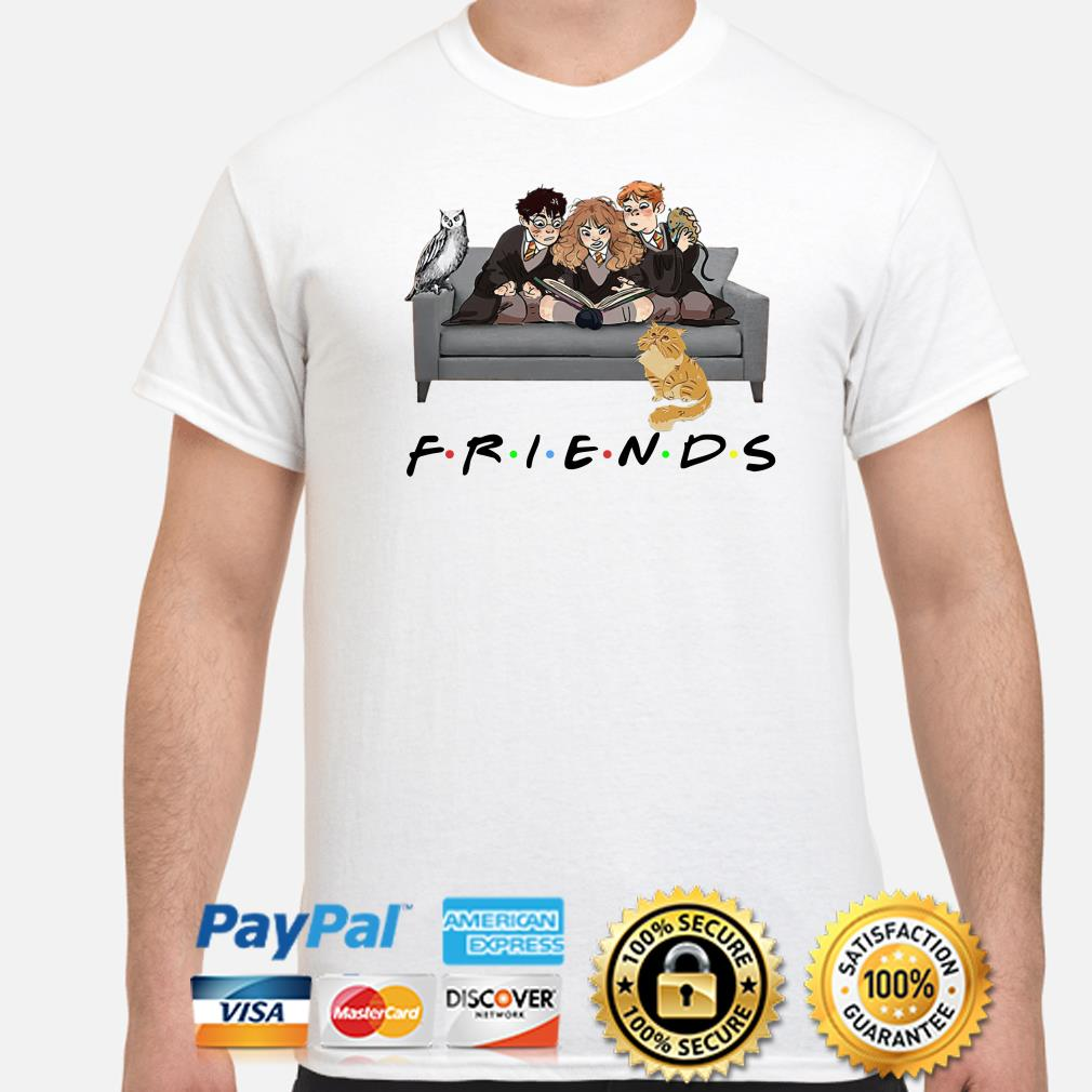 Harry Potter Hermione, Ron and pets Friends TV shirt