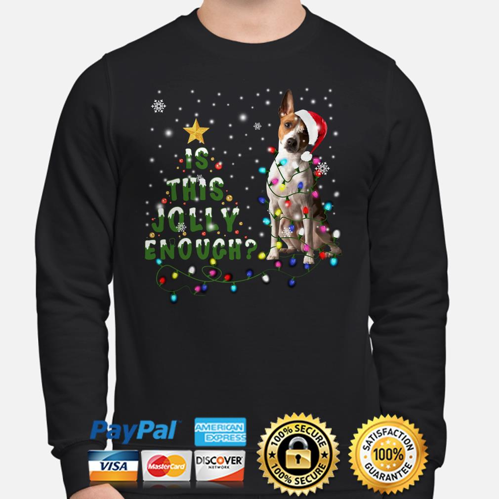 Jack russell is this Jolly enough Christmas lights sweater