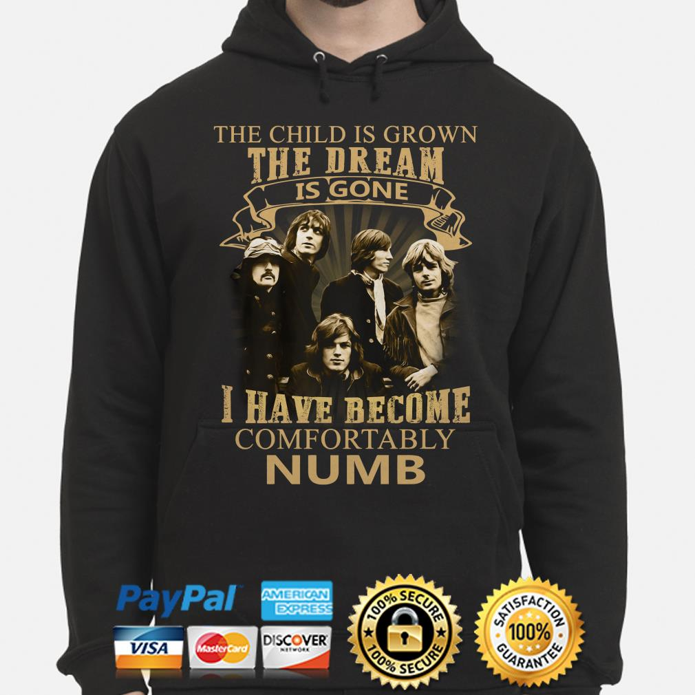 The Child is grown the dream is gone I have become comfortably numb Pink FLoyd Hoodie