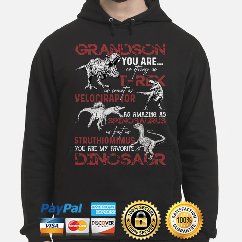 Dinosaurs Grandson you are as strong as T-Rex as smart as Velociraptor Hoodie