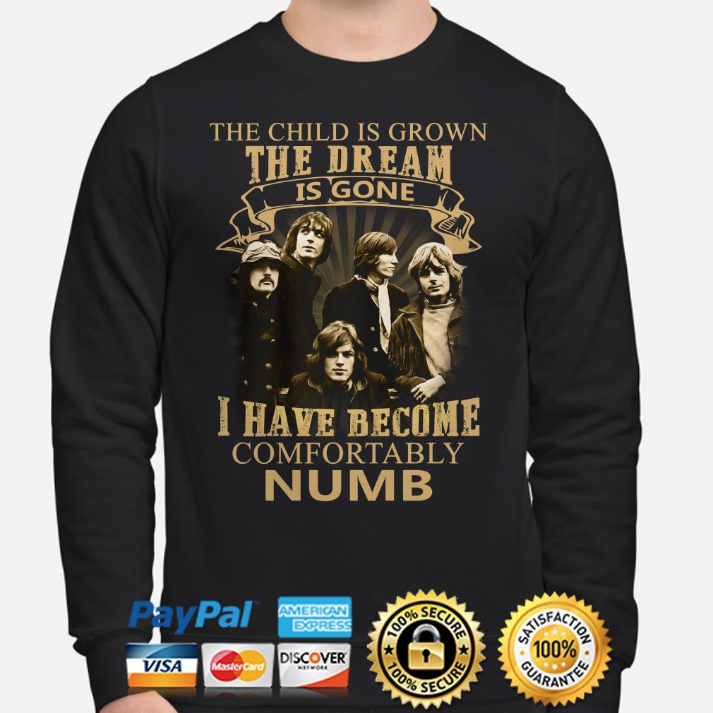 The Child is grown the dream is gone I have become comfortably numb Pink FLoyd Sweater