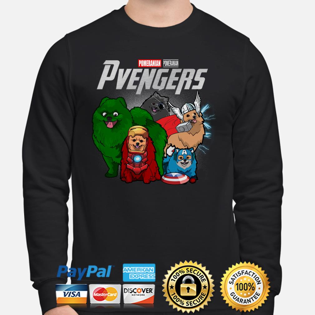 Marvel Avengers Pomeranian Pvengers Sweater