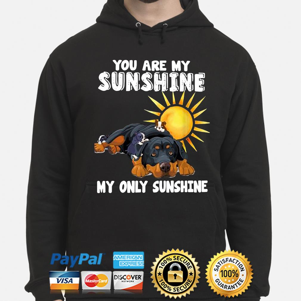 You are my Sunshine my only Sunshine s hoodie