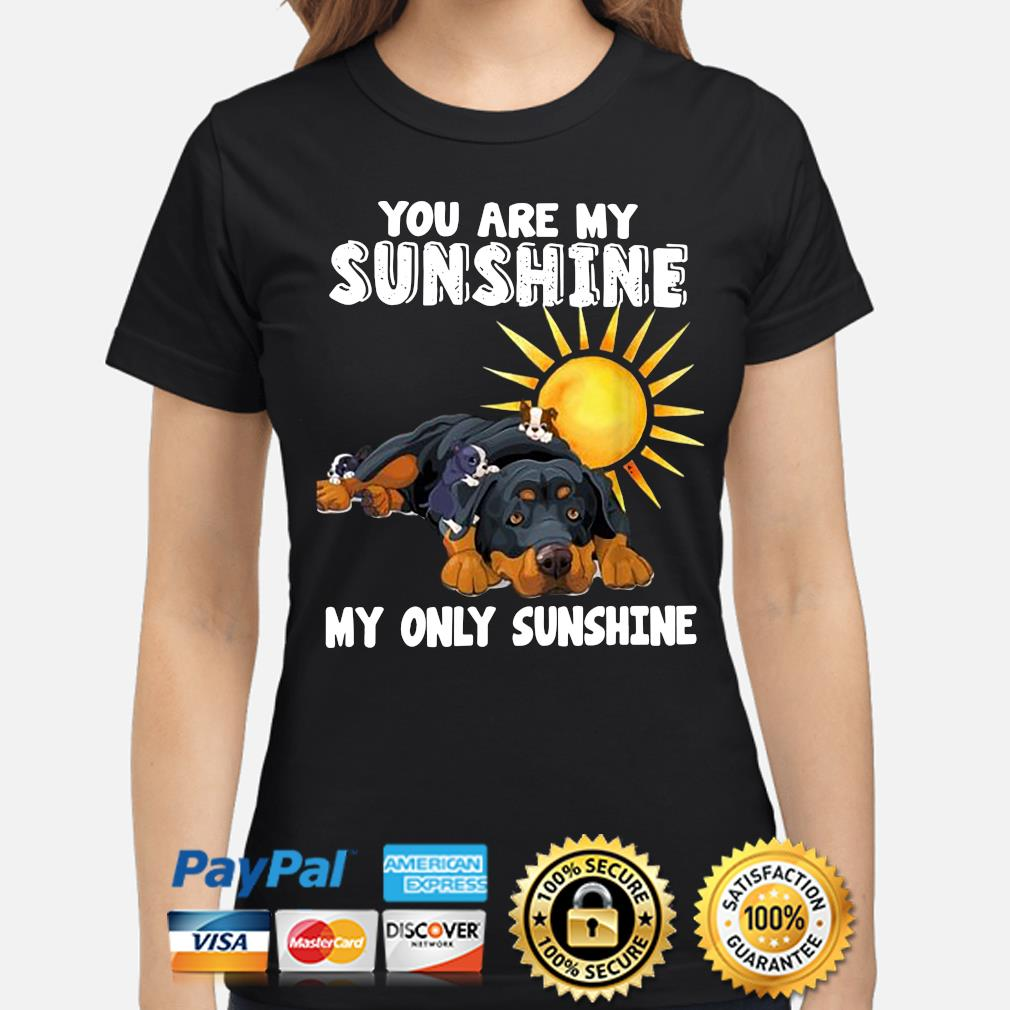 You are my Sunshine my only Sunshine s ladies-shirt