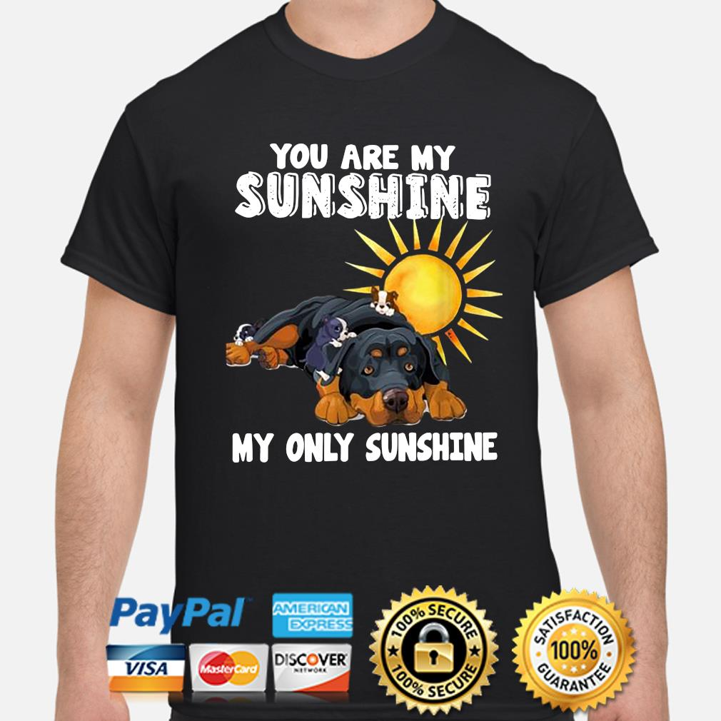You are my Sunshine my only Sunshine shirt