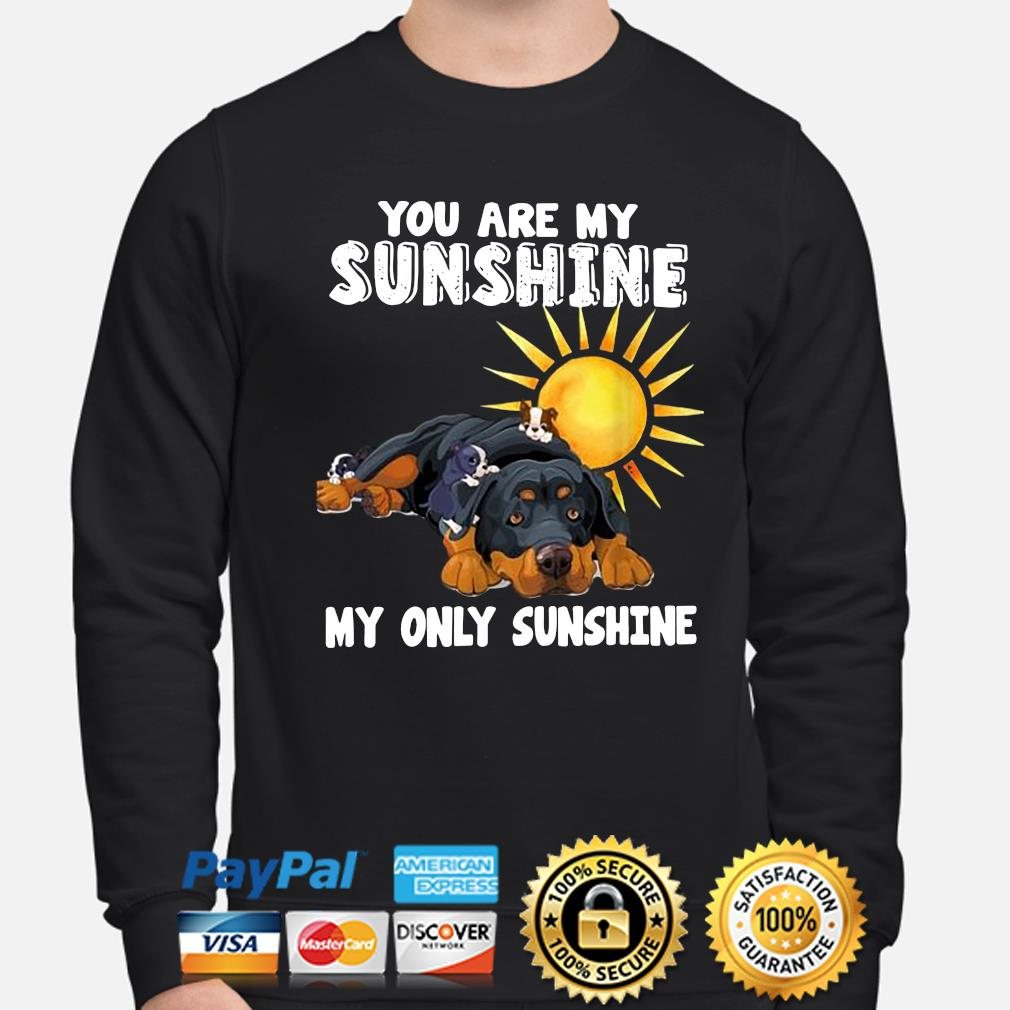 You are my Sunshine my only Sunshine s sweater