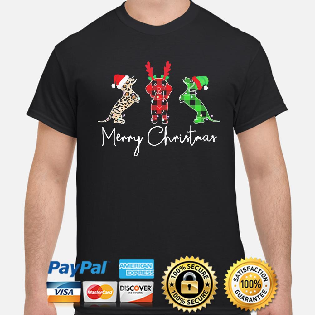 Dachshunds Merry Christmas sweater