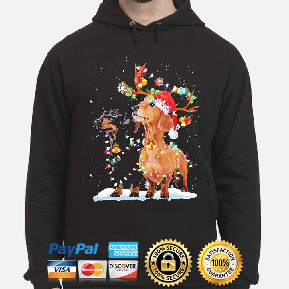 Funny Dachshunds Christmas Lights sweater hoodie