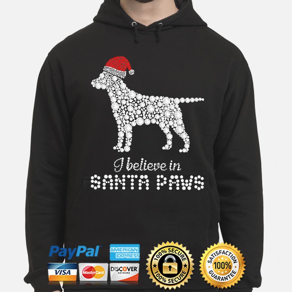 Labrador Retriever I believe in Santa Paws christmas sweater hoodie