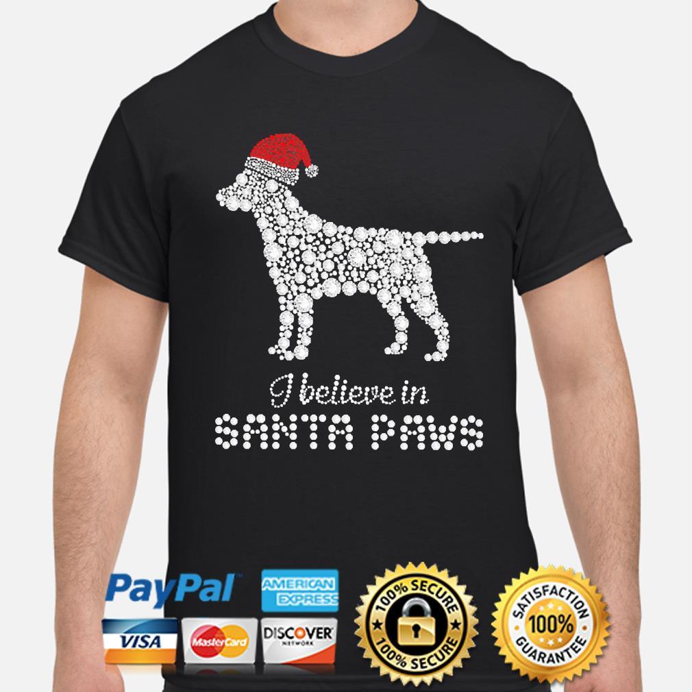 Labrador Retriever I believe in Santa Paws christmas sweater